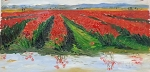 Tulip Field Reflection - Plein Air Oil
